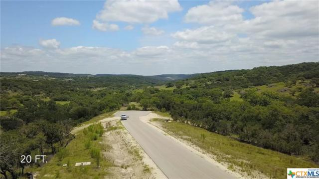 2007 Tempranillo, New Braunfels, TX 78132 (#381892) :: Realty Executives - Town & Country