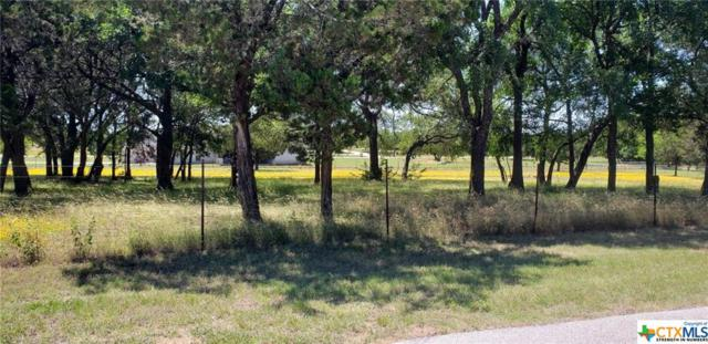 TBD Canyon Drive, Gatesville, TX 76528 (MLS #381951) :: The i35 Group
