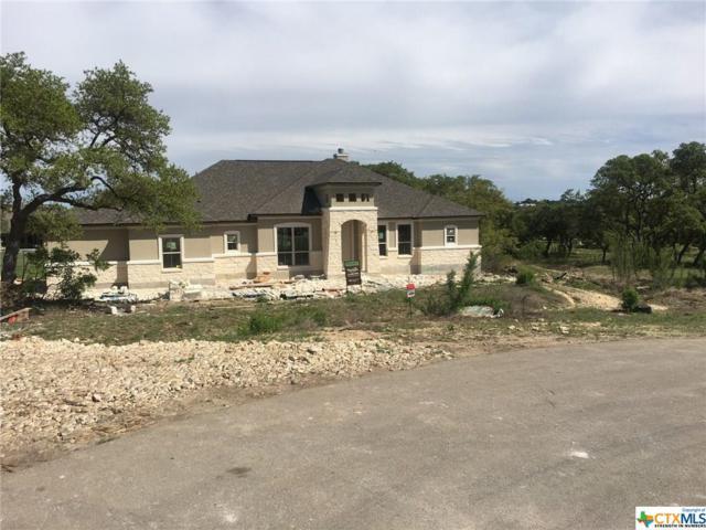 1306 Capitare, New Braunfels, TX 78132 (MLS #382019) :: Erin Caraway Group