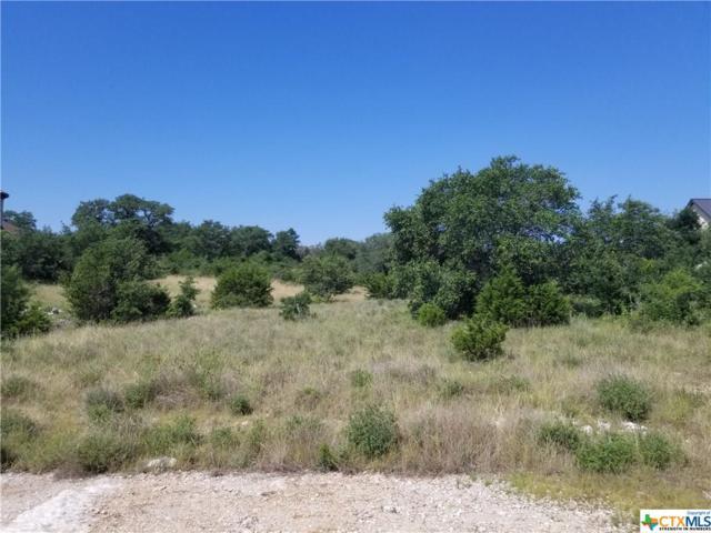 1253 Magnum, New Braunfels, TX 78132 (MLS #382028) :: Vista Real Estate