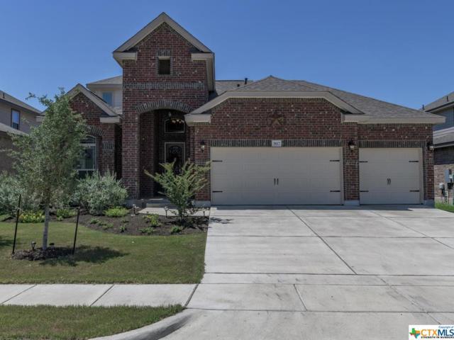 3617 Cinkapin Drive, San Marcos, TX 78666 (MLS #382073) :: Erin Caraway Group