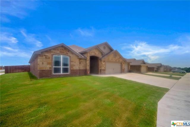 7202 Spirit Of The West Drive, Killeen, TX 76549 (MLS #382175) :: Magnolia Realty