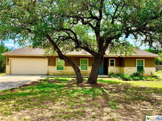 1371 Rocky Ridge Loop, Canyon Lake, TX 78133 (MLS #382183) :: Kopecky Group at RE/MAX Land & Homes