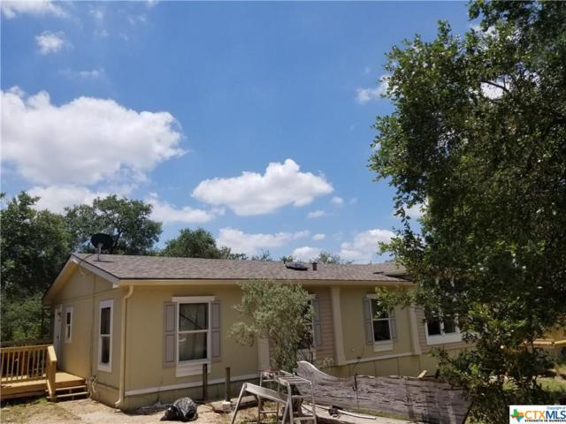 7221 Wegner Road, New Braunfels, TX 78132 (MLS #382209) :: Vista Real Estate