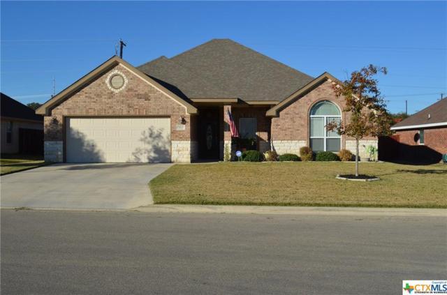 1507 Hazelnut Drive, Harker Heights, TX 76548 (MLS #382239) :: The i35 Group