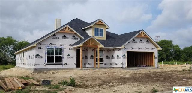 7109 Diamond Dove Drive, Temple, TX 76502 (MLS #382258) :: Vista Real Estate