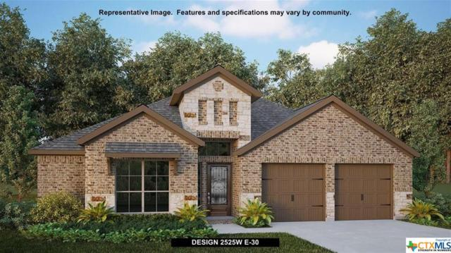 14012 Massima, San Antonio, TX 78253 (MLS #382300) :: Magnolia Realty
