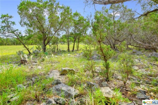 169 Longwood, New Braunfels, TX 78132 (MLS #382322) :: Magnolia Realty