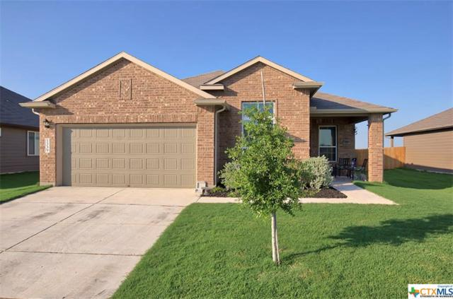 1339 Fall Cover, New Braunfels, TX 78130 (#382397) :: Realty Executives - Town & Country