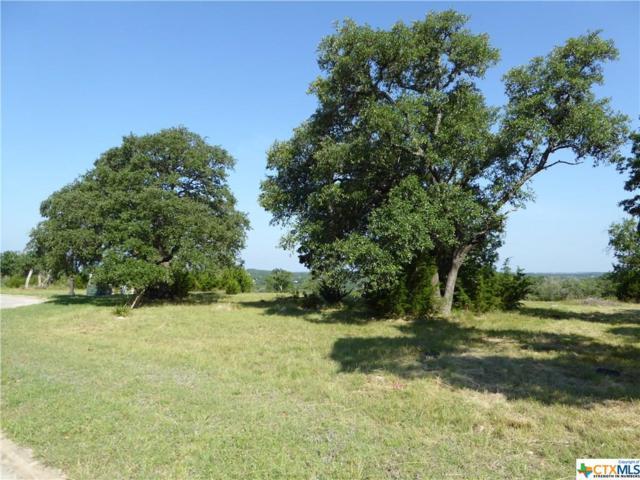 1226 Libby Lookout, Canyon Lake, TX 78133 (MLS #382414) :: Magnolia Realty