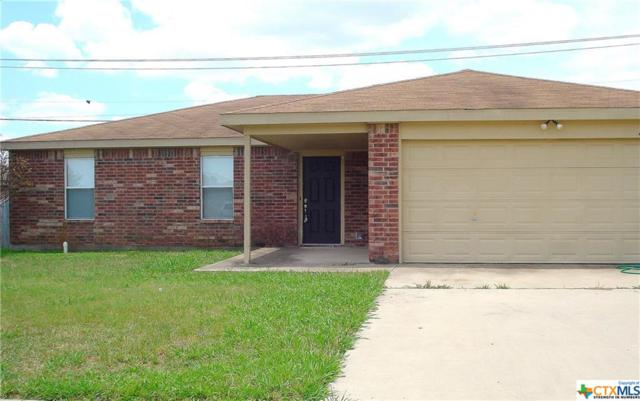 4204 Sand Dollar Drive, Killeen, TX 76549 (MLS #382438) :: Vista Real Estate