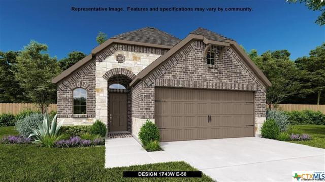 3004 Grove Terrace, Seguin, TX 78155 (MLS #382459) :: Magnolia Realty