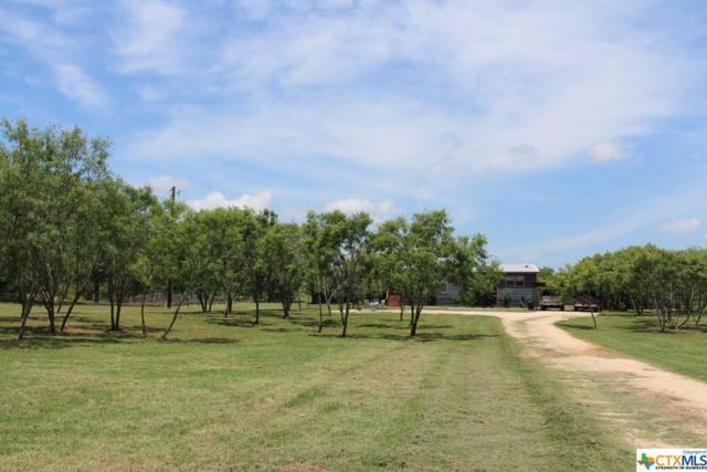 2122 Good Luck, Seguin, TX 78155 (MLS #382461) :: Magnolia Realty