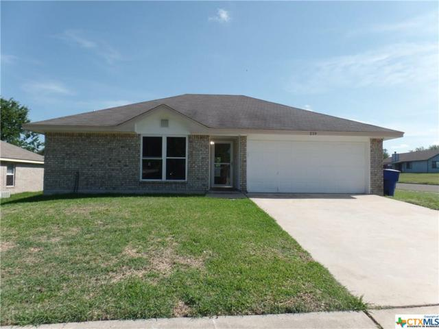 219 Pinto Drive, OTHER, TX 76522 (MLS #382575) :: The i35 Group