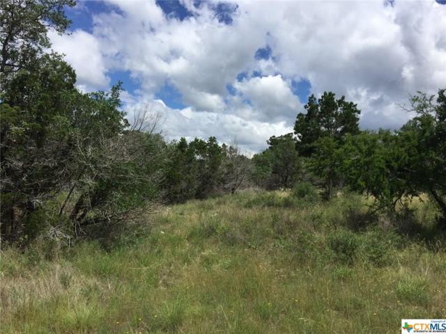 235 Pin Oak Trail, New Braunfels, TX 78132 (MLS #382609) :: Magnolia Realty