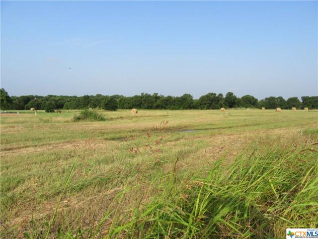 7113 K C Ranch Court, Temple, TX 76501 (#382658) :: First Texas Brokerage Company