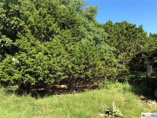 449&461 Stagecoach Drive, Canyon Lake, TX 78133 (MLS #382740) :: Magnolia Realty