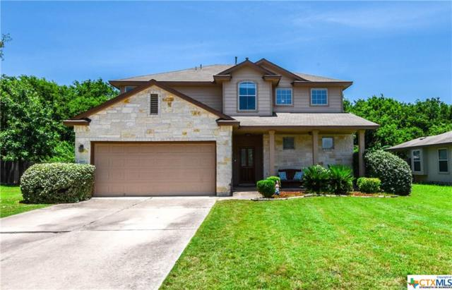 2600 Haselwood Lane, Round Rock, TX 78665 (#382749) :: 12 Points Group