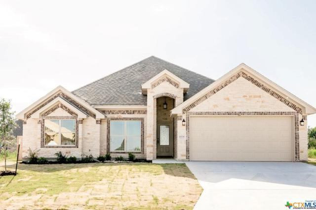 2608 Turtle Dove Drive, Temple, TX 76502 (#382798) :: Realty Executives - Town & Country