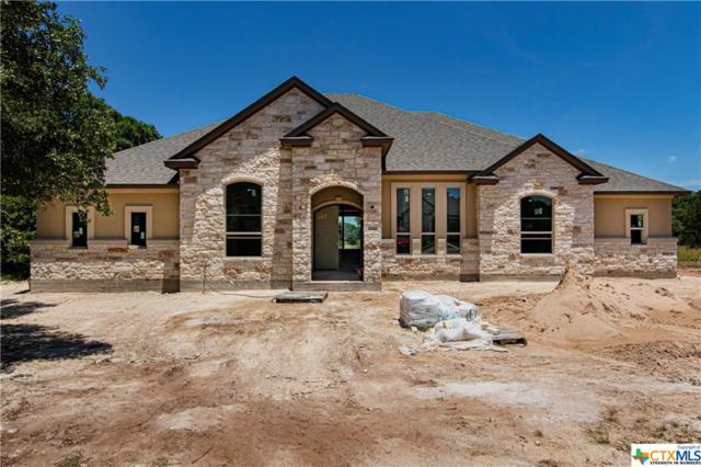 10901 Vista Heights Drive, Georgetown, TX 78628 (MLS #382859) :: RE/MAX Land & Homes