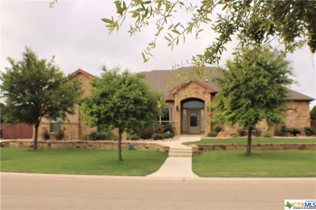 12013 Lago Terra Boulevard, Belton, TX 76513 (MLS #382909) :: Brautigan Realty