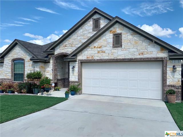 2517 Nolan Creek Street, Temple, TX 76504 (MLS #382918) :: Kopecky Group at RE/MAX Land & Homes