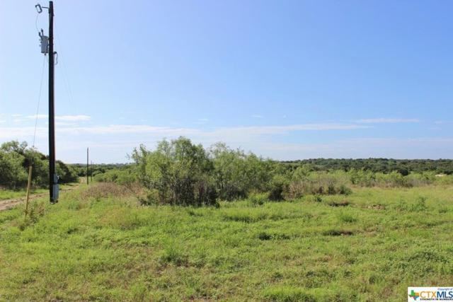 Red Rock, TX 78662 :: Kopecky Group at RE/MAX Land & Homes