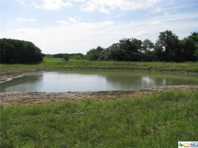 TBD County Road 100, Gatesville, TX 76528 (MLS #383064) :: The Zaplac Group
