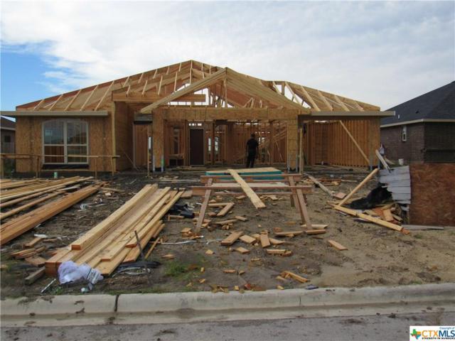 6003 Cordillera Drive, Killeen, TX 76549 (MLS #383091) :: Vista Real Estate