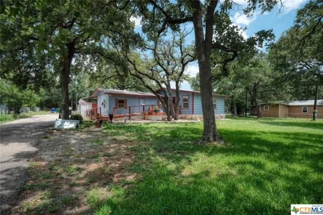 1007 Bluebonnet Drive, Cedar Park, TX 78613 (MLS #383130) :: Vista Real Estate