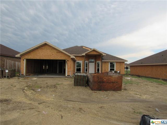 6102 Cactus Flower Lane, Killeen, TX 76549 (MLS #383149) :: Vista Real Estate
