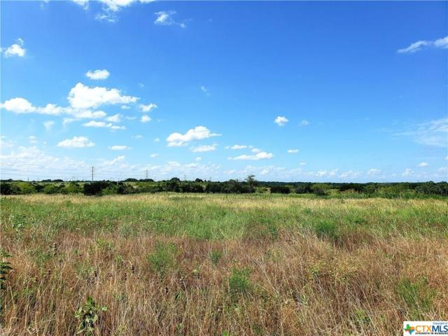 1104 Northcross Drive, Salado, TX 76571 (MLS #383172) :: Vista Real Estate
