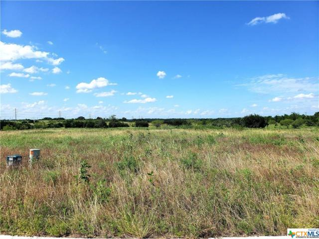 1106 Northcross Drive, Salado, TX 76571 (MLS #383174) :: Vista Real Estate