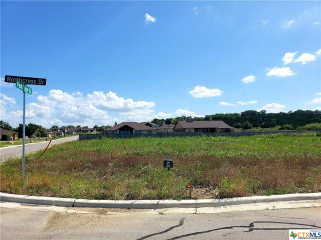 1103 Northcross Drive, Salado, TX 76571 (MLS #383175) :: Vista Real Estate