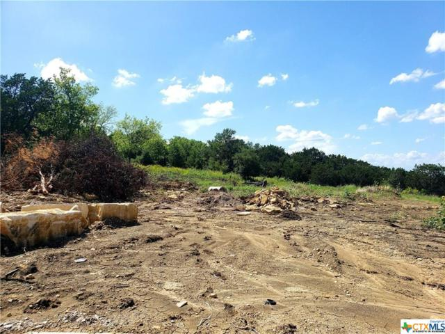 1011 Vista View Court, Salado, TX 76571 (MLS #383179) :: Vista Real Estate