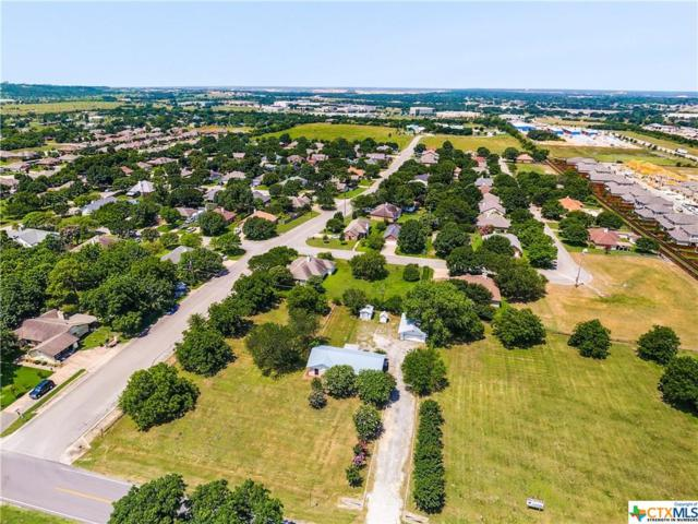1050 Old 1460 Trail, Georgetown, TX 78626 (MLS #383198) :: The Graham Team
