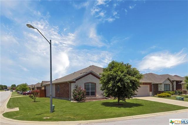 7438 Amber Meadow Loop, Temple, TX 76502 (MLS #383236) :: Brautigan Realty