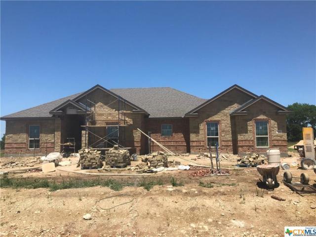 136 Metheglin, Temple, TX 76502 (MLS #383419) :: Magnolia Realty