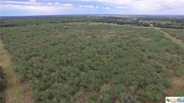 57 Diebel, Goliad, TX 77963 (MLS #383427) :: The Zaplac Group