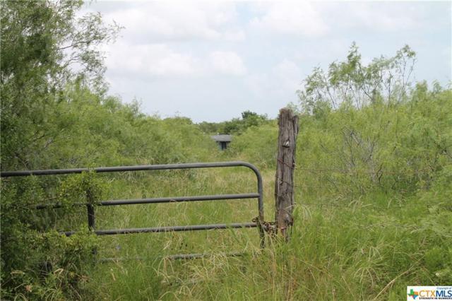 123 Cr 408 Road, Waelder, TX 78959 (MLS #383493) :: The Graham Team