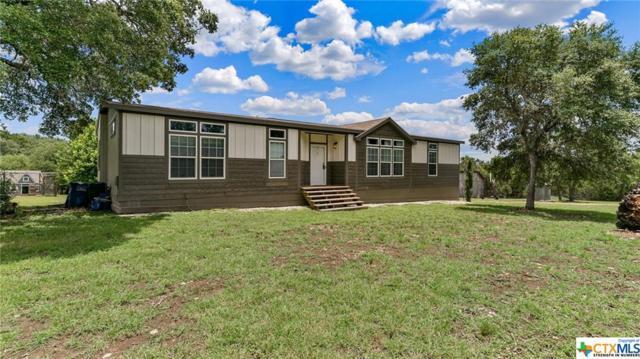 1061 Shannon Lee, New Braunfels, TX 78132 (MLS #383782) :: Vista Real Estate