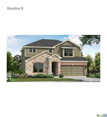 3622 Clear Cloud, New Braunfels, TX 78130 (#383808) :: Realty Executives - Town & Country