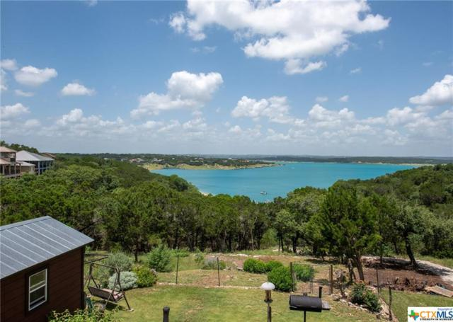1217 Riviera Drive, Canyon Lake, TX 78133 (#383857) :: Realty Executives - Town & Country