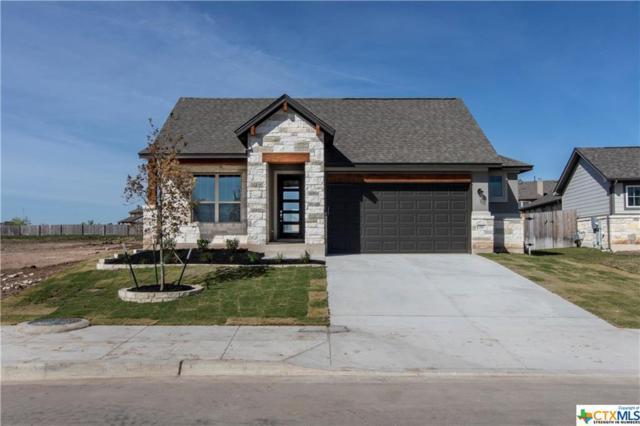 111 Creek Point Drive, Georgetown, TX 78628 (MLS #383858) :: RE/MAX Land & Homes