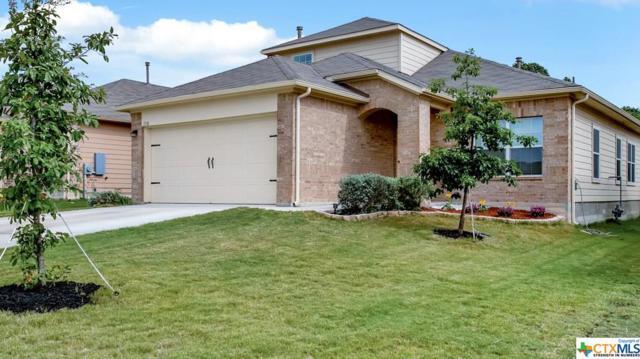 110 Tios Creek Drive, Kyle, TX 78640 (MLS #383929) :: Magnolia Realty