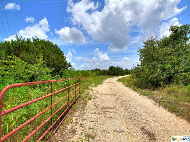 1105 County Road 222, Florence, TX 76527 (MLS #383967) :: The Graham Team