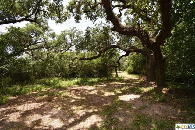 Tract B Old Hwy Rd, Inez, TX 77968 (MLS #383978) :: The Graham Team