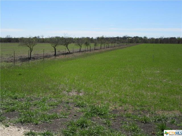 TBD Fm 935      Tract 5, Troy, TX 76579 (MLS #384015) :: The i35 Group