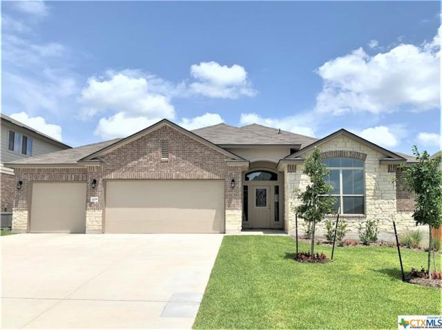 1129 Iron Glen Drive, Temple, TX 76502 (MLS #384031) :: Magnolia Realty