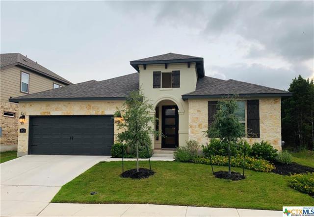 643 Hidden View Street, New Braunfels, TX 78130 (MLS #384087) :: Vista Real Estate